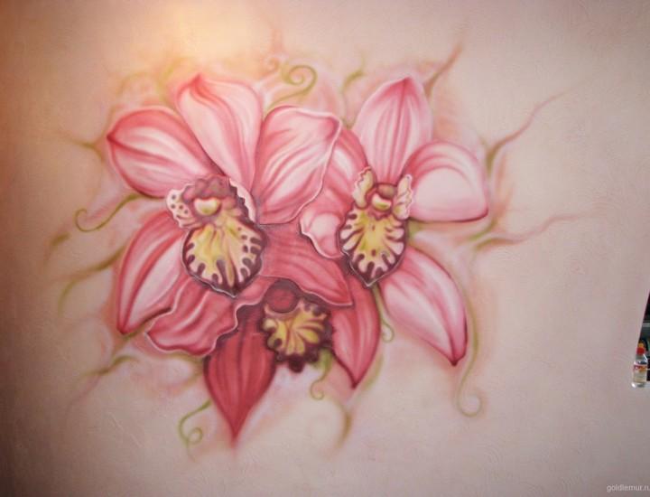 Рельеф — Орхидея