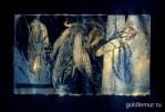 Zea-mays-II.-litografiya-35h50sm-